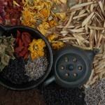 Chinese herbal medicine1